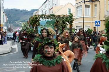 Desfile de Carnaval en Cedeira, 18 de febrero de 2012 - Carnaval Cedeira 2012 - Galicia -fotografía por Fermín Goiriz Díaz (95-)