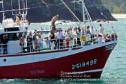 Procesión Marítima en honor de la Patrona de Cedeira - Cedeira, 16 de agosto de 2012 - fotografía por Fermín Goiriz Díaz (164)