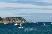 Procesión Marítima en honor de la Patrona de Cedeira - Cedeira, 16 de agosto de 2012 - fotografía por Fermín Goiriz Díaz (221)