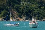 Procesión Marítima en honor de la Patrona de Cedeira - Cedeira, 16 de agosto de 2012 - fotografía por Fermín Goiriz Díaz (333)