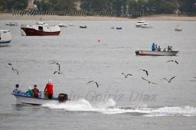 Procesión marítima en honor a la virgen del mar - Cedeira, 16-08-2013 - Fotografía por fermín Goiriz Díaz (14)