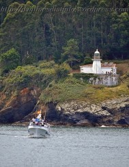 Procesión marítima en honor a la virgen del mar - Cedeira, 16-08-2013 - Fotografía por fermín Goiriz Díaz (21)