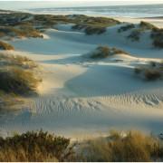 23 dunas s.jacinto