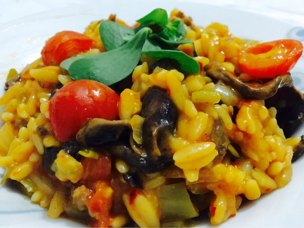 Orzo with beef