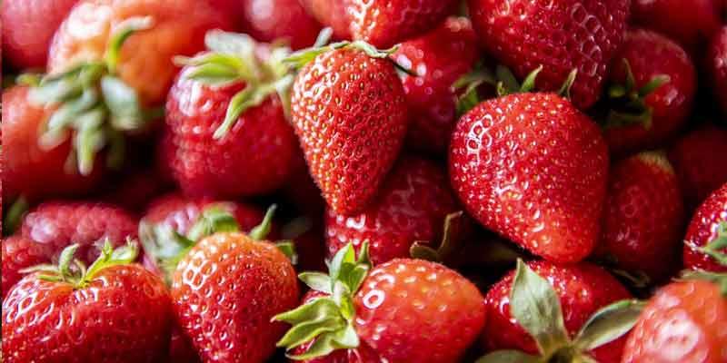 Do Strawberries Go Bad? Keep Strawberries Fresh Longer ...