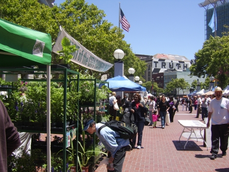 Farmer's Market San Francisco