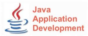 java developer india