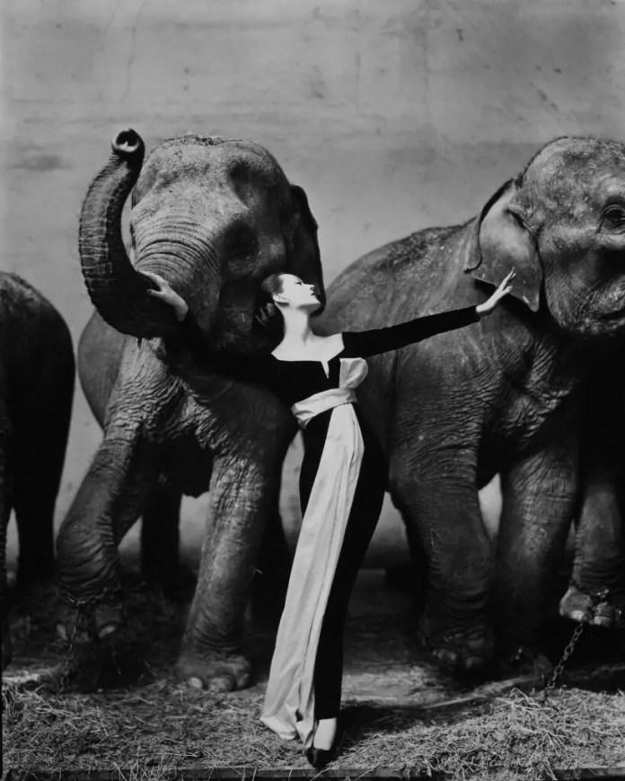 Richard Avedon: reportage e moda