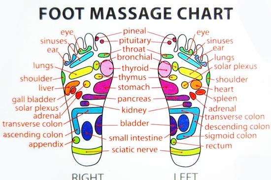 reflexology foot diagram reflex zones 2004 dodge neon sxt radio wiring – therapy for the soul paolo da floresta