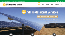 SEI Professional Services