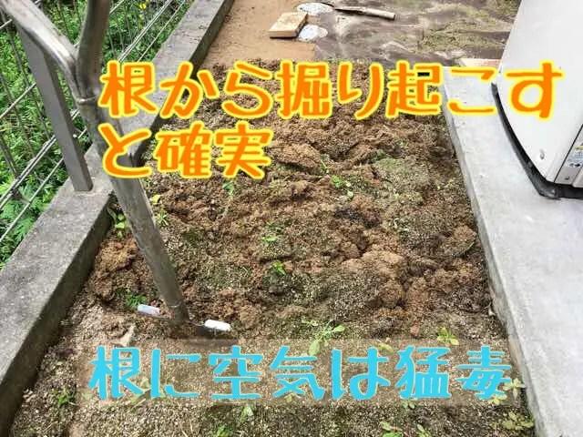 人工芝 庭 DIY