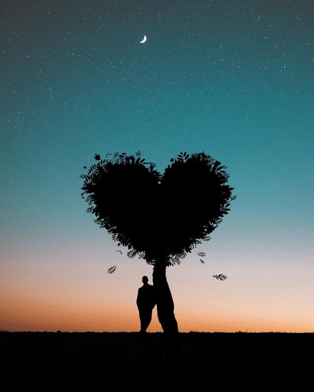 love amour arbre de la passion homme accoudé à un arbre tree love night moon do it with passion or do nothing !