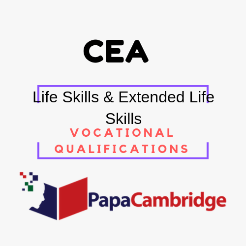Life Skills Vocational Qualifications PPT Slides