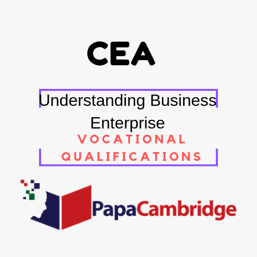 Understanding Business Enterprise Vocational Qualifications Notes