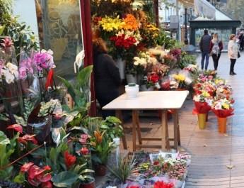 Blumenhändler auf den Ramblas