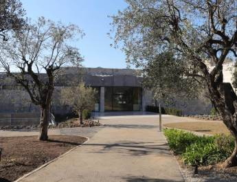 Das Museum Marc Chagall steht in einem Olivenbaumgarten