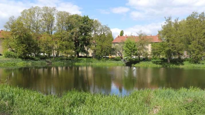 Das Breitkopfbecken in Reinickendorf