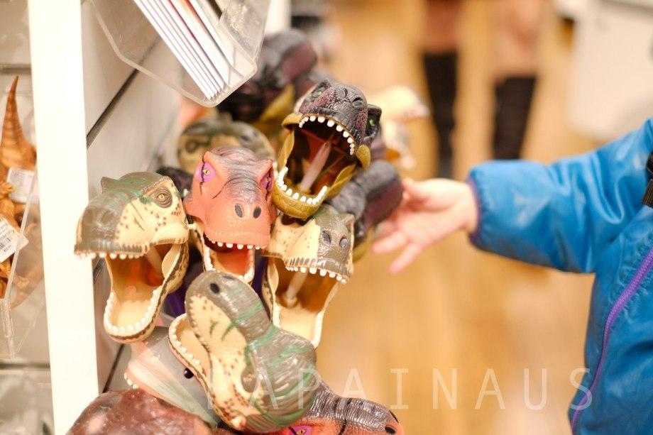恐竜のお土産