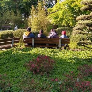 Tag der Familie: Eine asiatische Familie von hinten in einem Hamburger Garten