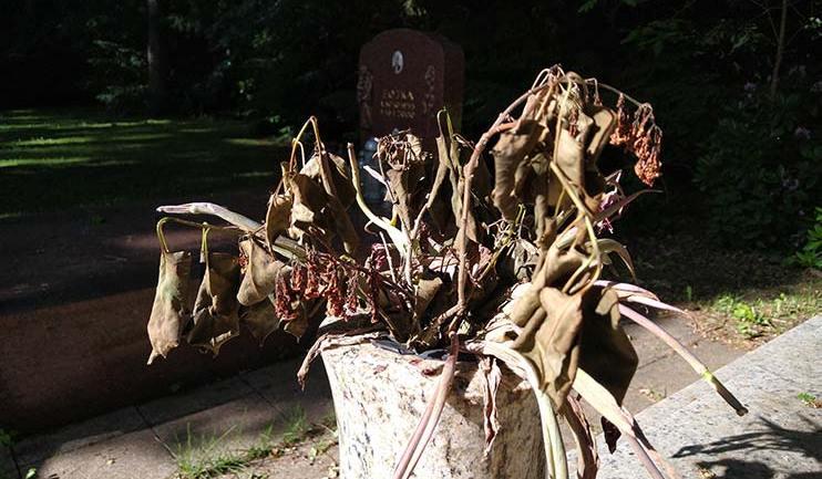 Vertrockneter Blumenstrauß am Grab: Podcast: Männer in Todesnähe