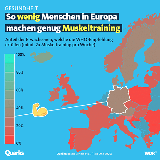 muskeltraining europa