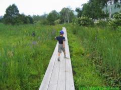 2007_08_12 湿地帯があった.JPG
