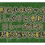 【練馬区少年サッカー】久しぶりに更新!!コレーガSCの活動状況を確認