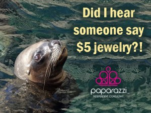 did I hear someone say $5 jewelry - Paparazzi meme