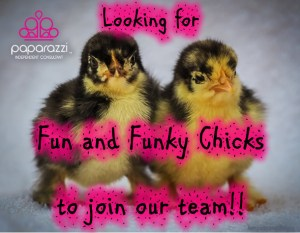 Fun and Funky Chicks wanted | Join Paparazzi Jewelry