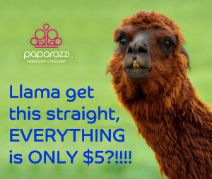 llama get this straight - Paparazzi Jewelry is only $5