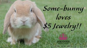 Some bunny loves $5 Jewelry