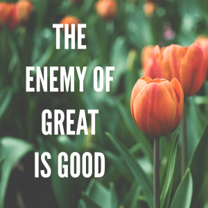 The Enemy of Good is Great quote