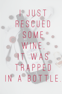 saved the wine - Funny image
