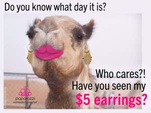 humpday - have you seen my $5 earrings
