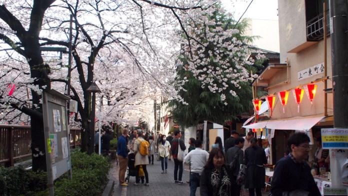 桜が満開(中目黒)