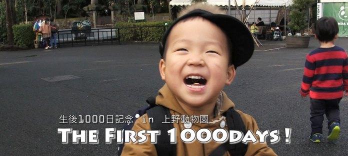 息子が生後1,000日(2歳9ヶ月)を迎えてわかったこと。全4項目。