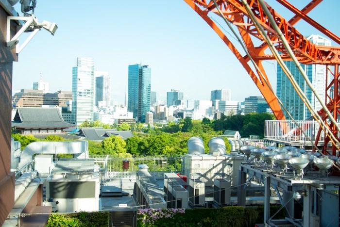 東京タワーの階段からの見晴らし(増上寺)
