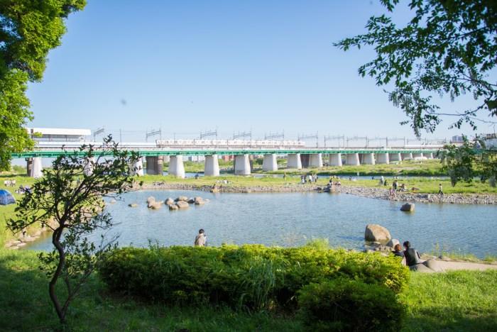美しい多摩川