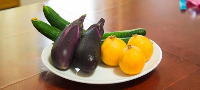 ご近所さんから頂きたお野菜(きゅうり、なす、びわ)