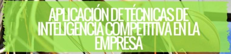 Aplicación de técnicas de Inteligencia competitiva en la empresa
