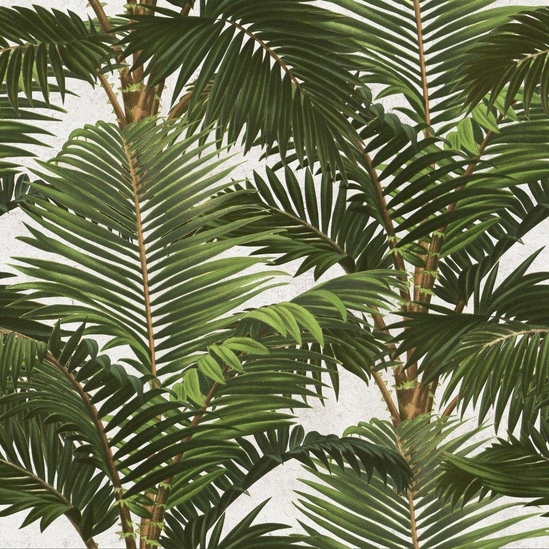 Papel pintado palmas jardin tropical wp20104 mind the gap - Papel pintado tropical ...