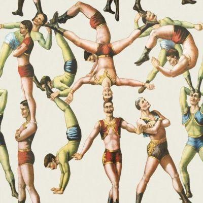 Papel Pintado The Acrobats - Mind The Gap