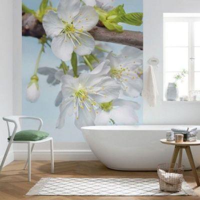 Fotomural Komar Blossom