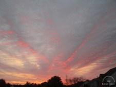 small-sunrise-11-01-2016-v2