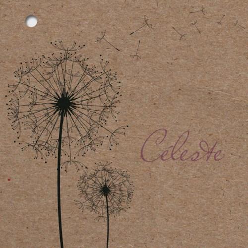 faire-part naissance Pollen couverture en kraft
