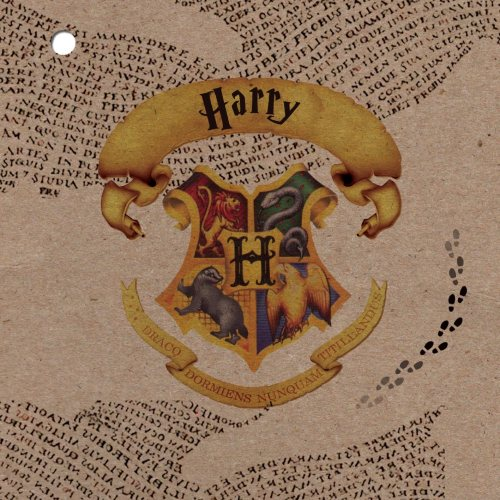 couverture kraft faire-part de naissance theme harry potter