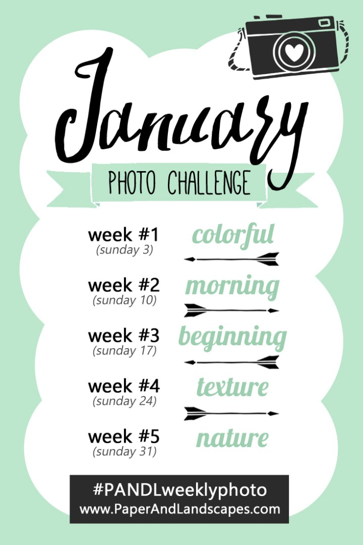 Weekly photo challenge by Paper and Landscapes - January