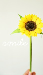 smile-paper-and-landscapes-free-wallpapers