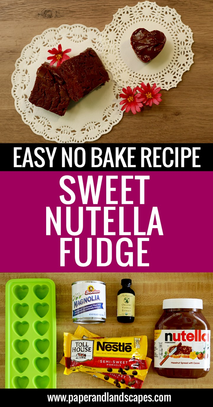 easy-recipe-no-bake-sweet-nutella-fudge-paper-and-landscapes-pinterest