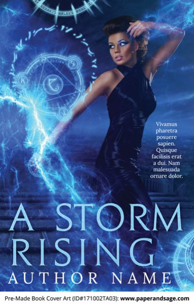 Pre-Made Book Cover ID#171002TA03 (A Storm Rising)